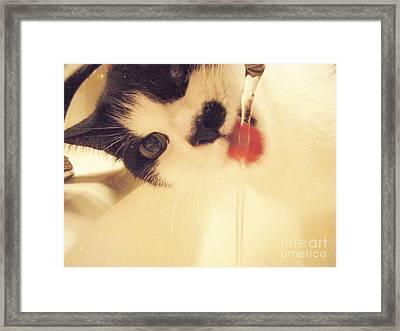 I See You  Framed Print by Kristine Nora