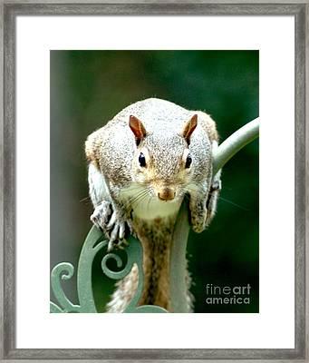 I See You Framed Print by Lynn Reid