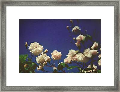 I Swear I Recognize Your Breath Framed Print by Laurie Search