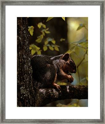 I Thought I Was Alone Framed Print