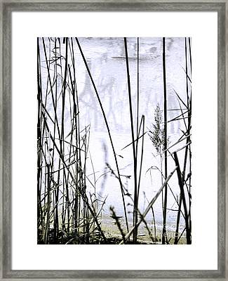 I Took The Road Less Traveled Framed Print by Robyn King