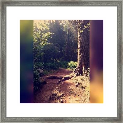I Try To Walk The Path Of The Righteous Framed Print