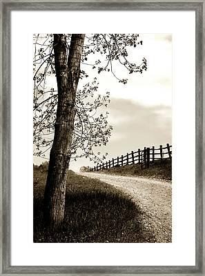 I Walk The Gravel Road 2 Framed Print by Marilyn Hunt