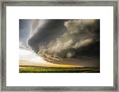 I Was Not Even Going To Chase This Day 021 Framed Print