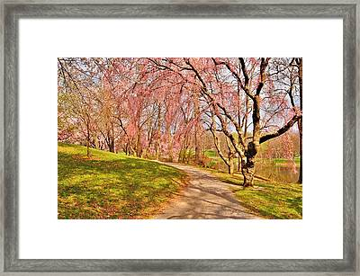 I Will Follow You If You Follow Me - Holmdel Park Framed Print