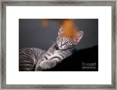 I Will Get It Framed Print