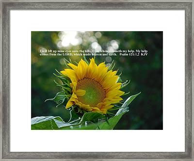 I Will Lift Up Mine Eyes Framed Print by Diannah Lynch