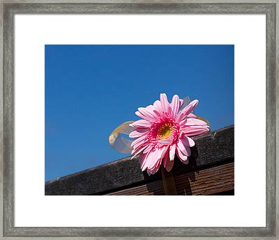 Framed Print featuring the photograph I Will Never Forget You by Lora Lee Chapman