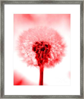 I Wish In Red Framed Print by Valerie Fuqua
