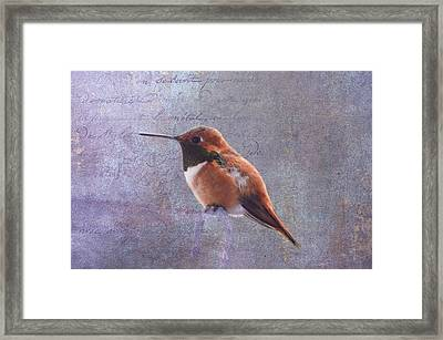 I Wrote A Letter To My Love Framed Print by Diane Schuster