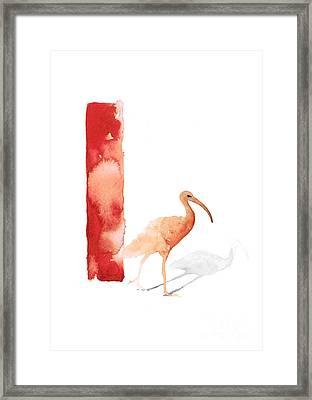 Ibis Watercolor Alphabet Art Print Framed Print by Joanna Szmerdt