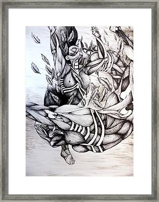 Icarus Framed Print by Amy Fix