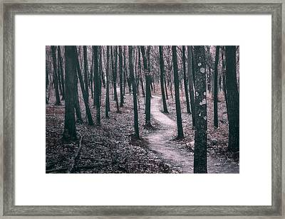 Ice Age Trail Near Lapham Peak Framed Print