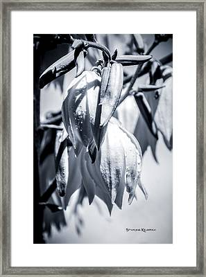 Framed Print featuring the photograph Ice Ball by Stwayne Keubrick