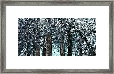 Ice Blue Arch Framed Print