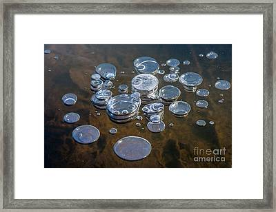 Ice Coins On The Water Framed Print