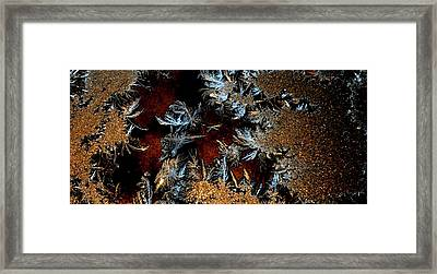 Ice Cold Gold Framed Print