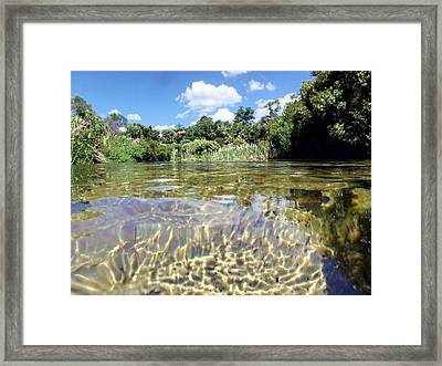 Ice Cold Ice Clear Framed Print by Sheri McLeroy