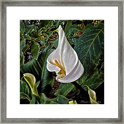 Framed Print featuring the digital art Ice Cream Calla Lily by Pennie  McCracken