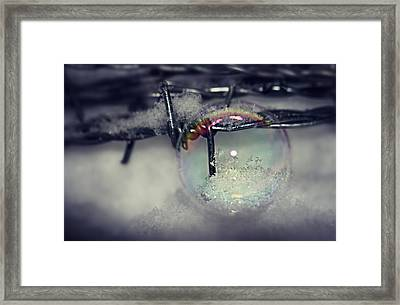 Ice Crystals To Bubble In Bubble On Wire Mesh Framed Print by Heike Hultsch