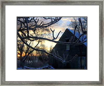 Ice Crystals Framed Print by Trina Prenzi