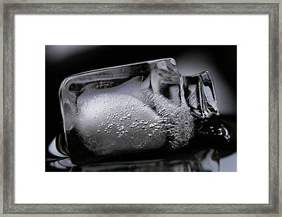 Framed Print featuring the photograph Ice Cube V2 by Rico Besserdich
