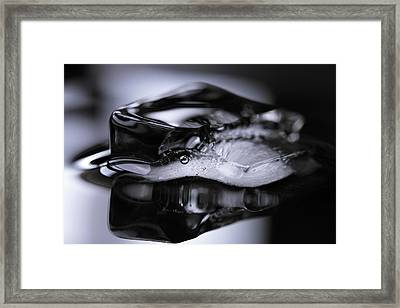Framed Print featuring the photograph Ice Cube V3 by Rico Besserdich