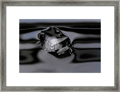 Framed Print featuring the photograph Ice Cube V4 by Rico Besserdich