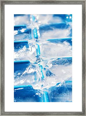 Ice Cubes Framed Print by Carlos Caetano