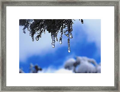 Ice Drops Framed Print
