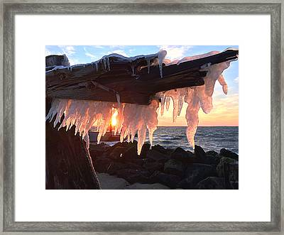 Ice Fangs Framed Print