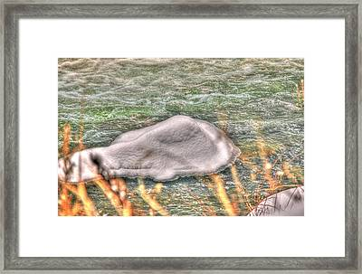 Ice Flow Framed Print by Rick Couper
