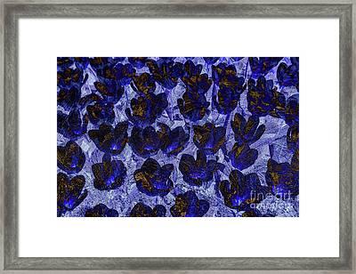 Ice Flowers Framed Print by Patricia Hofmeester