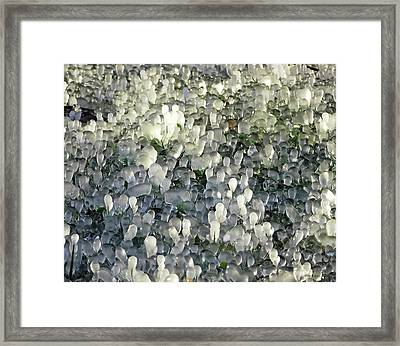 Ice On The Lawn Framed Print