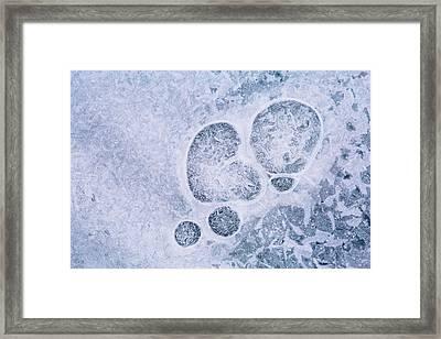 Ice Pattern Three Framed Print by Davorin Mance