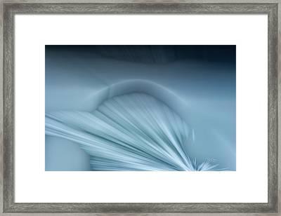 Ice Shelf Framed Print