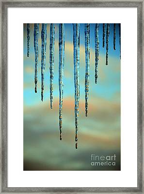 Ice Sickles - Winter In Switzerland  Framed Print