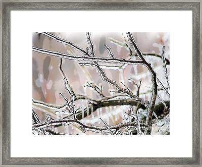 Ice Storm Ice Framed Print