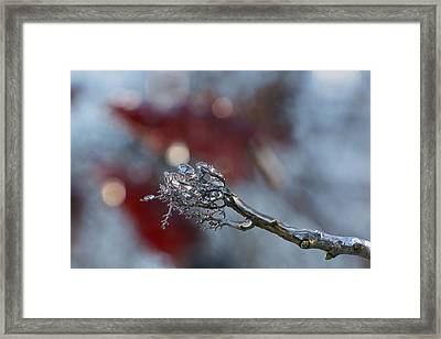 Ice Wand Framed Print