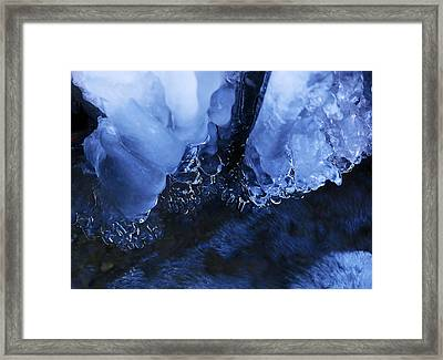 ice water.Icicles hanging from the branch resulting from the melting snow Framed Print