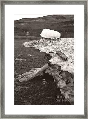 Iceberg Silo Framed Print by Heather Kirk