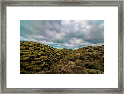 Iceland Moss And Clouds Framed Print by Venetia Featherstone-Witty