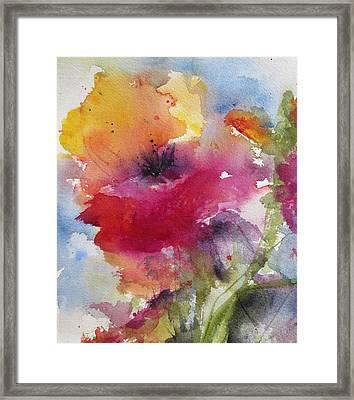 Iceland Poppy Framed Print by Anne Duke