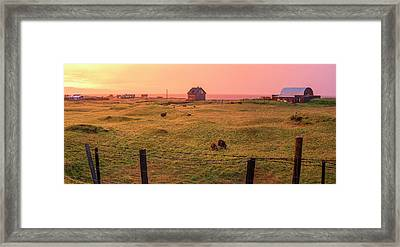 Framed Print featuring the photograph Icelandic Farm During Sunset by Brad Scott