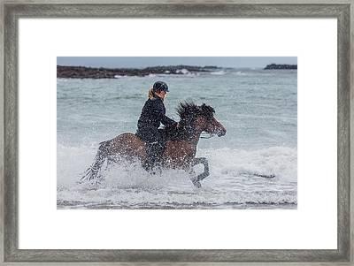 Icelandic Horse And Rider Framed Print