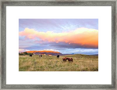 Framed Print featuring the photograph Icelandic Horses Under The Sunset by Brad Scott