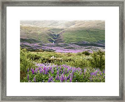 Icelandic Treasures Framed Print