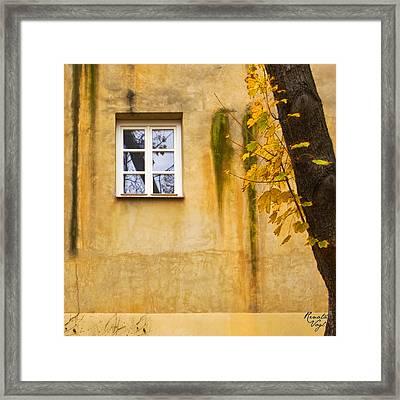 Ich Warte Unten Framed Print by Renata Vogl