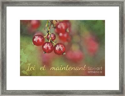 Ici Et Maintenant  Framed Print by Aimelle