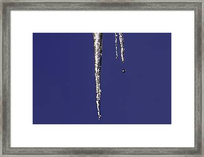 Framed Print featuring the photograph Icicle  by Sherri Meyer